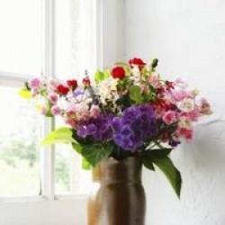 7 Techniques for Creating Beautiful Flower Arrangements