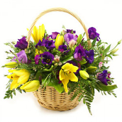 Keep Hanging Basket Fresh For a Long Time in All Season with Our Tips