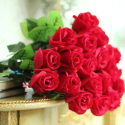 Convey your Fondness with Beautiful Red Flowers