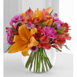 Sentiments Flowers For Any Occasions