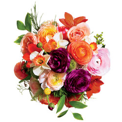 Flowers the best gift for all occasions to show your care