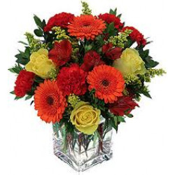 Online Same Day Flower Delivery to Show How Much You Care