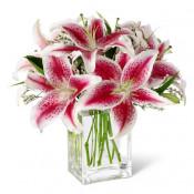Send Lilies